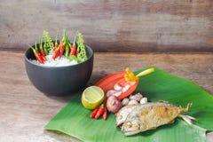 Aardvoedsel voor gezondheid Stock Foto