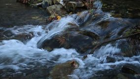 Aardwaterval bij de cascade van de bergrivier Kleurrijke groene bemoste rotsen, waterval en cascade Aardachtergrond met mooie bl stock videobeelden