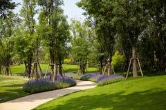 Aardweg met tuin Royalty-vrije Stock Afbeeldingen