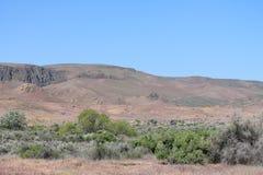 Aardwoestijn Stock Foto
