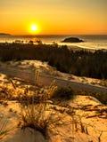 Aardzeegezicht met Weergeven van Gloeiende Zon en Wild Bloeiend Bush bij Schitterende Oranje Zonsopgang stock afbeeldingen