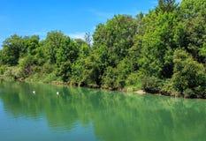 Aare-Fluss in der Schweiz Lizenzfreie Stockfotografie