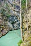 Aare klyfta - Aareschlucht på floden Aare Arkivbilder