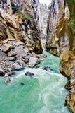 Aare klyfta - Aareschlucht på floden Aare Arkivfoton
