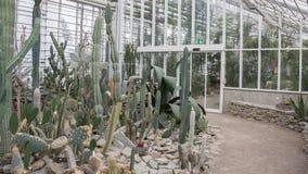AARHUS, DENMARK - APRIL 12, 2015: The Botanical Garden Stock Photography