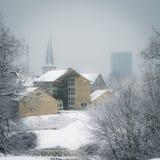 Aarhus en invierno - parquee con la nieve, Dinamarca Foto de archivo
