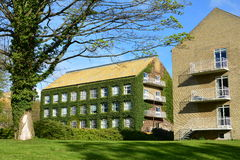 Aarhus-Universitätsgelände Stockfotografie