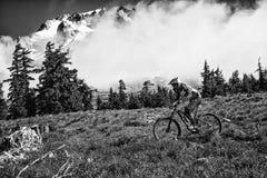 Aaron Bradford e capa do Mt. Foto de Stock Royalty Free