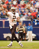 Aaron Brooks New Orleans Saints Royaltyfri Foto
