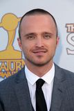 Aaron Paul royaltyfri bild