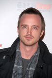 Aaron Paul, le jeu Photo libre de droits