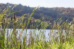 Aartal lake dam hesse germany. Aartal lake dam in hesse germany Royalty Free Stock Images