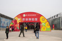 AAsian Chinese, Beijing, agriculture Carnival, Royalty Free Stock Photo