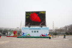 AAsian Chinese, Beijing, agriculture Carnival, Royalty Free Stock Photography