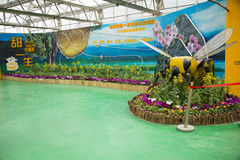 AAsian-Chinese, Peking, Landwirtschaft Carnivalï-¼ ŒIndoor-Ausstellungshalle Lizenzfreie Stockbilder