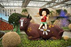 AAsian-Chinese, Peking, Landwirtschaft Carnivalï-¼ ŒLandscape-Plan, Flötencowboy Lizenzfreie Stockfotografie