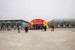 AAsian kines, Peking, åkerbruk Carnivalï ¼ Œ Arkivbild