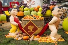 AAsian kines, Peking, åkerbruk Carnivalï ¼ŒLandscape orientering, festlig docka Arkivbild