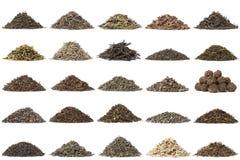 Aassortment del té seco Foto de archivo libre de regalías