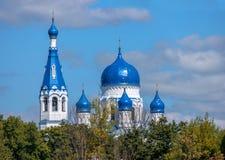 Abóbada azul de St ortodoxo Basil Cathedral, Gatchina, Rússia Fotos de Stock Royalty Free