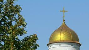 A abóbada da árvore de castanha próxima da igreja ortodoxa video estoque