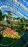 Abóbada da flor, jardins pela baía, Singapura Foto de Stock