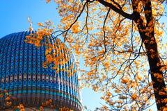 A abóbada da mesquita em St Petersburg Fotos de Stock Royalty Free
