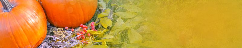 Abóbora alaranjada sobre o fundo outonal brilhante da natureza da beleza Autumn Thanksgiving Day Imagens de Stock Royalty Free
