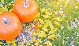 Abóbora alaranjada sobre o fundo outonal brilhante da natureza da beleza Autumn Thanksgiving Day Fotografia de Stock Royalty Free