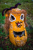 Abóbora amarela de Dia das Bruxas na grama Fotografia de Stock Royalty Free