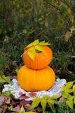 Abóbora amarela para o feriado o Dia das Bruxas exterior Fotos de Stock