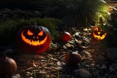 Abóbora assustador de Dia das Bruxas em uma noite Imagens de Stock