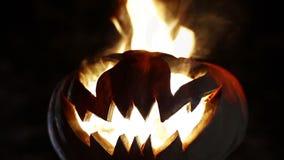 Abóbora cinzelada de Halloween looped filme