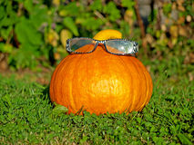 Abóbora com vidros Imagem de Stock