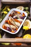 Abóbora cozida com galinha Autumn Vegetables Bandeja com alimento imagem de stock