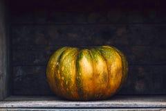 Abóbora Curvy da exploração agrícola do amarelo do verde da forma em umas caixas de madeira na prateleira do mercado Imagens de Stock