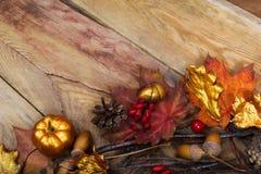Abóbora da ação de graças, bolota e folhas douradas decoração do carvalho, sp da cópia Fotografia de Stock