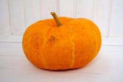 Abóbora da pintura do amarelo do outono das folhas de bordo Imagens de Stock