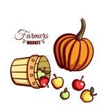 Abóbora das maçãs do mercado dos fazendeiros Fotos de Stock