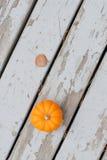 Abóbora de Autumn Halloween fotografia de stock