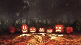 Abóbora de Dia das Bruxas e luzes feericamente na floresta da noite ilustração do vetor