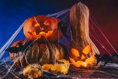 Abóbora de Dia das Bruxas em uma Web de aranha com doces e iluminação escura Conceito da doçura ou travessura no fundo azul e ver Imagem de Stock Royalty Free