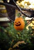 Abóbora de Halloween Foto de Stock Royalty Free