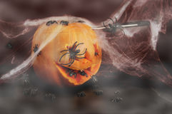 Abóbora de Halloween com aranhas fotografia de stock royalty free