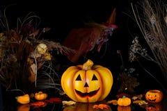 Abóbora de Halloween com bruxa. Imagens de Stock Royalty Free