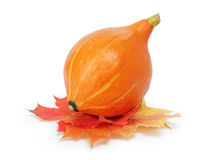 Abóbora de Halloween com folhas Imagens de Stock Royalty Free
