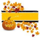 Abóbora de Halloween com folhas Fotos de Stock