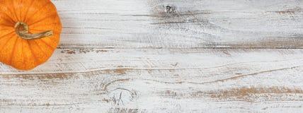 Abóbora de outono no fundo de madeira branco rústico fotografia de stock royalty free