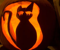 Abóbora do gato de Halloween Foto de Stock Royalty Free