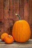 Abóbora e abóbora Fotografia de Stock